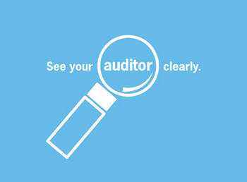Auditing Archives Vga Chartered Accountants Inc